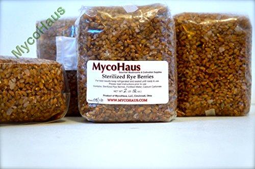 2 lbs sterilized rye grain ()
