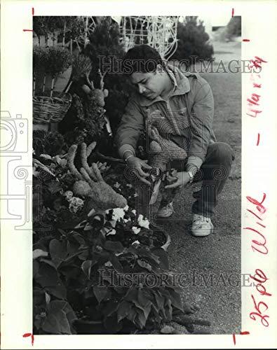 - 1992 Press Photo Jesus Caja ties a bow around on a topiary reindeer in Houston