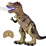 Remote Control Dinosaur for Kids, Electronic Walking & Spray Mist Large Dinosaur Toys with Glowing Eyes, Roaring Dinosaur Sound, 18.5' Realistic T-Rex Toy for Boys