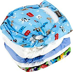 Kushies 5 Pack Reusable Ultra-lite Diapers for Infants, Boy