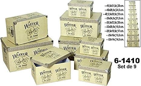 DRW - Set 9 Cajas cartón con Asas metálicas 49,5x31,5x20cm (Grande): Amazon.es: Hogar
