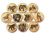 Set of 10 Vintage Safari Animals Print Wood Cabinet Knobs
