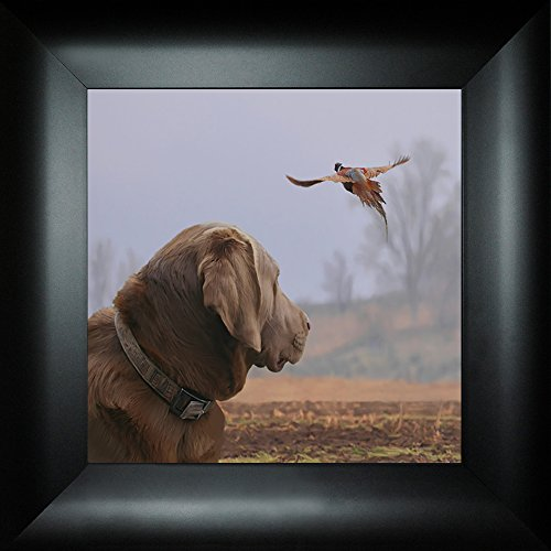 Eye on the Prize I By Todd Thunstedt 18x18 Chocolate Golden Yellow Lab Bird Dog Ring-necked Pheasant Hunting Outfitter Lodge Mossberg Weatherby Retriever Goose Framed Art Print Wall Dcor Picture