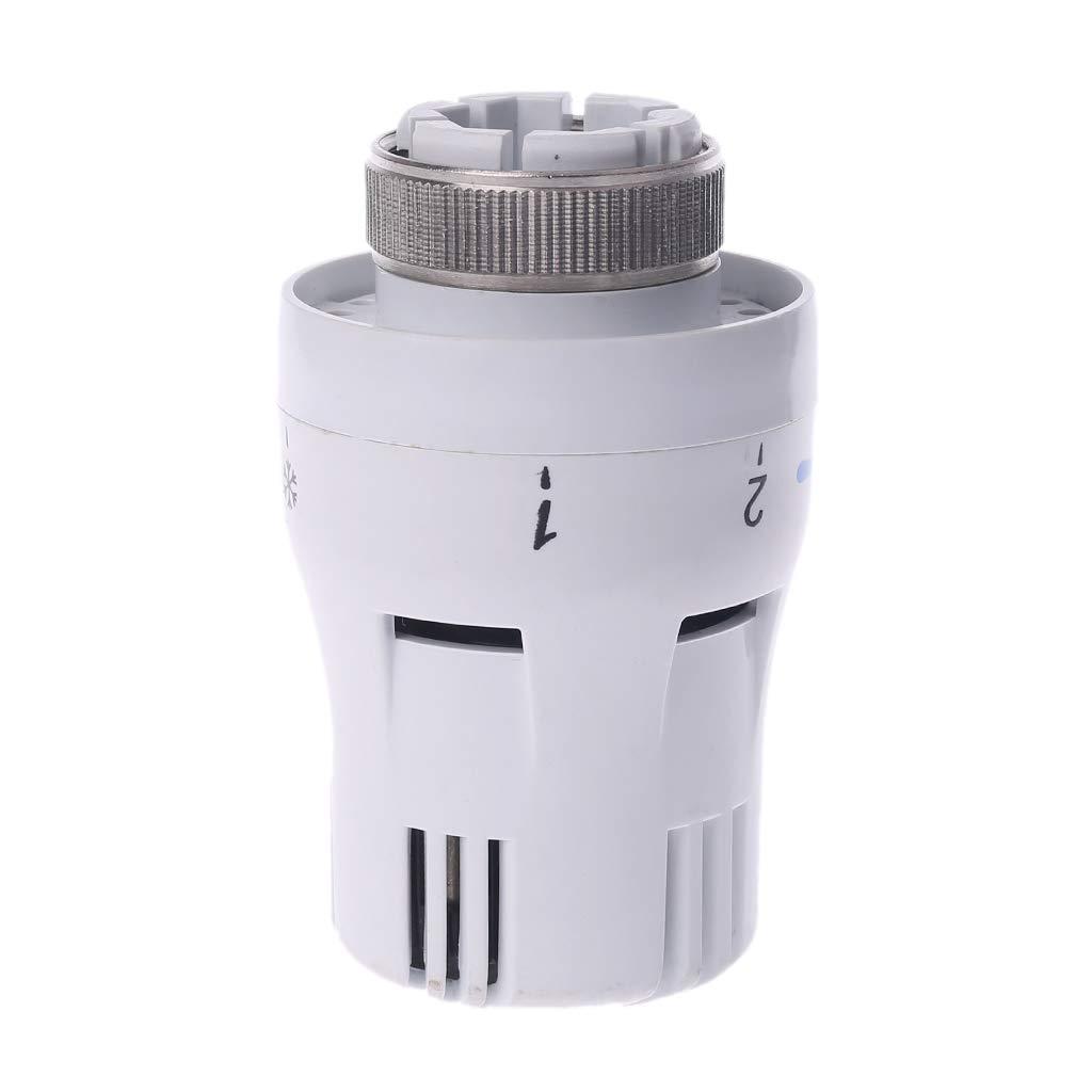 Analysisty Valvola di Controllo della Temperatura pneumatica per valvole termostatiche