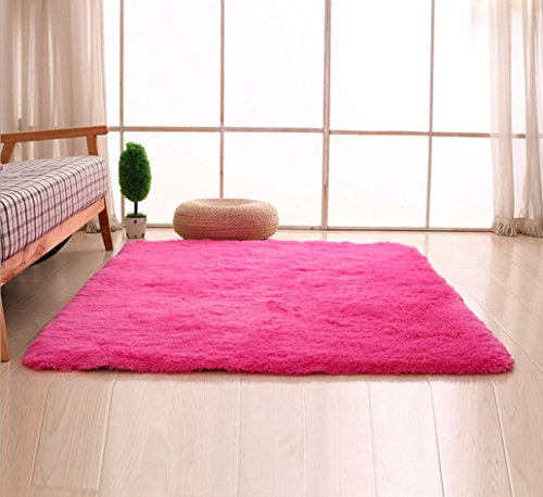 Hot Pink Carpet (Bnxbb Ultra Soft 4Cm Thick Indoor Fluffy Thick Indoor Area Rug for Home Decor Living Room Bedroom Kitchen Dormitory Rectangle,Size:24 x 47 Inch (60Cm X 120Cm) Hot)
