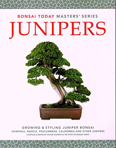 Junipers Growing Styling Juniper Masters product image