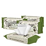 ASSWIPES Flushable Cleaning Hygiene Wipes with Aloe and Vitamin E! Made for Bathroom, Body, Baby, Feet and Face! Alcohol, Paraben, and Fragrance FREE for Sensitive Skin! (4 Pack)