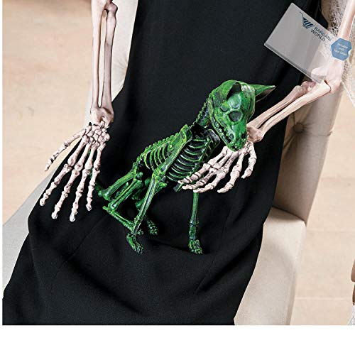 Bargain World Neon Green Halloween Skeleton Chihuahua (With Sticky Notes) (Chihuahua Skeleton)