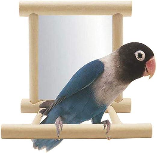 1 espejo para pájaros, patio de juegos de cacatúas, escalera de loro y parakeet, soporte para plataforma de perca, perchas para loros, juguetes de madera para periquitos, cacatúas, conos, pájaros: Amazon.es: Productos