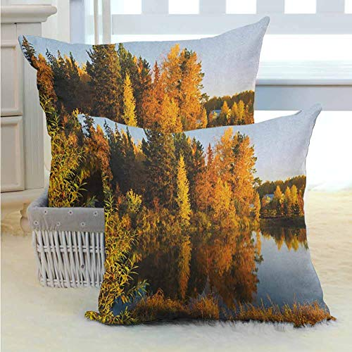 Fall Throw Pillow Cushion Cover Lake at Sunset Rays Autumnal Landscape Pond Woodland Outdoors Ecology Environment Festive Home Decor Cushion Covers for Sofa, Couch, Bed and Car 2PCS Multicolor -