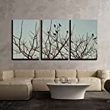 wall26 - 3 Piece Canvas Wall Art - Group of Crows Sitting on the Bare Branches of a Tree Against the Sky - Modern Home Decor Stretched and Framed Ready to Hang - 16