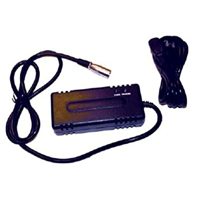 Universal Power Group 24V 2A Scooter Charger for IZIP Chopper I250 I350 I-300 I-400 I-500: Electronics