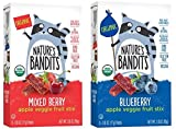 Nature's Bandits Organic Fruit & Veggie Stix, Variety Pack (Blueberry & Mixed Berry), 0.6 Ounce 5 Pack (2 Count) Gluten Free, Vegan, Kosher