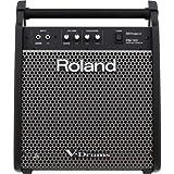 Roland PM-100Personal Monitor pa-sonarumonita-supi-ka-