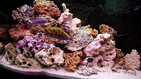 10kg NATURAL Aquarium Rock Fish Tank Holey Stone Ideal for Malawi Cichlid MIXED Set of Stones