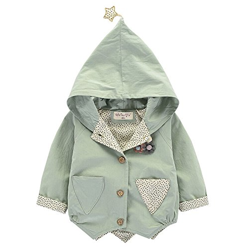 Birdfly Little Girls Cute Embellishments Dress Coat with Pockets Stars Lined Baby Toddler Hoodie Jacket Kids Fall Winter Clothes (3T-4T, Green) (Bunting Weather All)