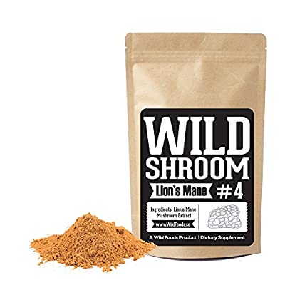 Lion's Mane Mushroom Extract 10:1 Superfood Powder by Wild Foods | Fruiting Bodies Only | Adaptogenic Nootropic Herb for Focus, Memory and Health