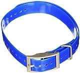 Garmin 1-Inch Dog Collar, Blue