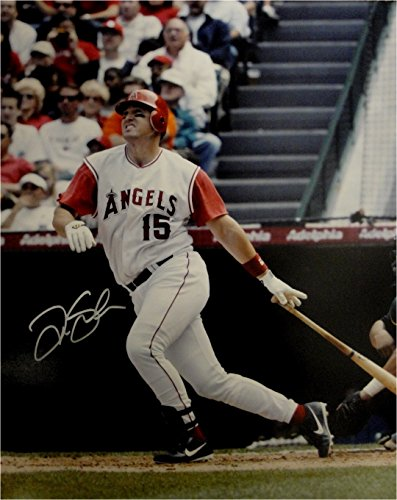Tim Salmon Hand Signed Autographed 16x20 Photo Anaheim Angels At Bat Big Swing