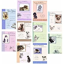 10 Pets Greeting / Birthday Cards With Cats & Dogs