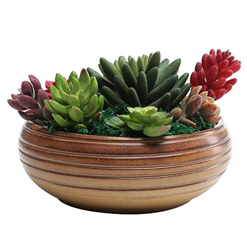 7-Inch Rustic Round Ribbed Ceramic Succulent Planter Bowl, Brown (Ceramic Ribbed)