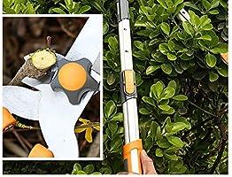 GOHHK Recorte los árboles jardín Tijera, telescópico Remoto, vástago Fruta, Recorte Herramientas jardín Rojas: Amazon.es: Hogar