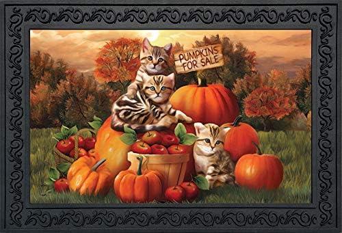 Briarwood Lane Fall Kittens Pumpkins Doormat Apple Basket Autumn Indoor Outdoor 18 x 30