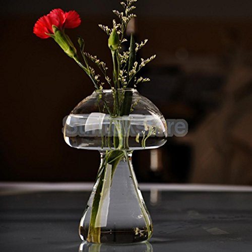 goheungyung-shop-clear-glass-flower-plant-vase-terrarium-container-home-garden-mushroom-decor