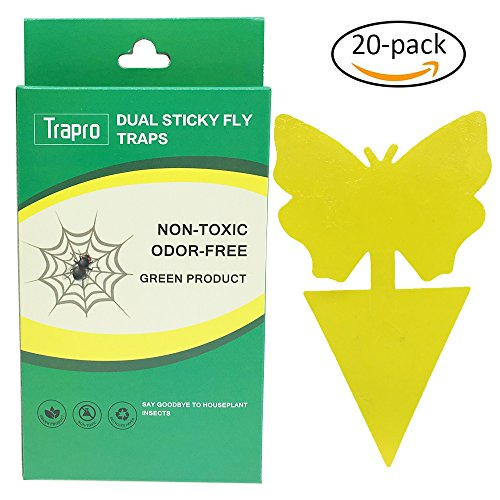 Fruit Fly Control (Trapro Dual Sticky Fly Traps for Houseplant Fly Insect Control, Non-Toxic and Eco-Friendly - 20 Pack / Butterfly Shape)