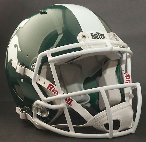 NCAA Riddell Michigan State Spartans Speed Full-Size Authentic - Michigan Mask