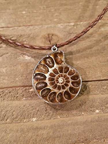 (Fossil Ammonite Pendant Braided Leather Necklace Primitive Sea Ocean Gem Stone Earth Jewelry Hippie Boho Handmade (N142))