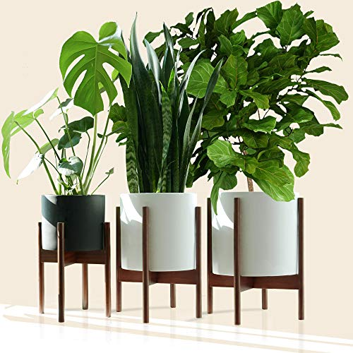 Fox & Fern – Multi-Tiered Plant Stand Bundle – Acacia Wood – EXCLUDING Ceramic Plant Pots – Set of 3