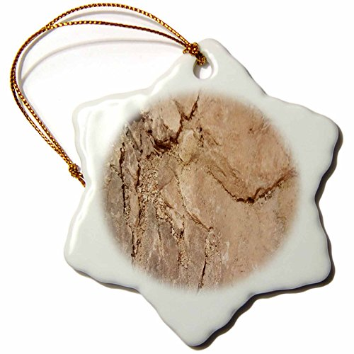 3dRose TDSwhite – Rock Photos - Geological Design - 3 inch Snowflake Porcelain Ornament (orn_281886_1) by 3dRose