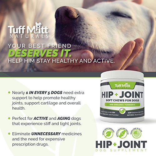 Dog Supplements for Joints, Natural Soft Chews Support
