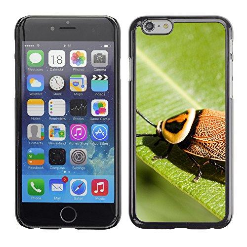 "Premio Sottile Slim Cassa Custodia Case Cover Shell // V00003037 brousse cafard // Apple iPhone 6 6S 6G PLUS 5.5"""