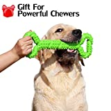 Durable Dog Chew Toy for Powerful Chewers Large Medium Dogs, 13 Inch Large