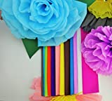 Crepe Paper 12 Different Colors Flower Making Art