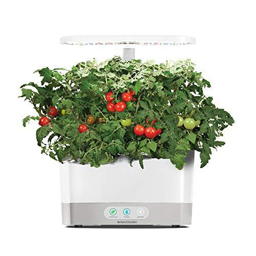 AeroGarden White Harvest Indoor Hydroponic Garden
