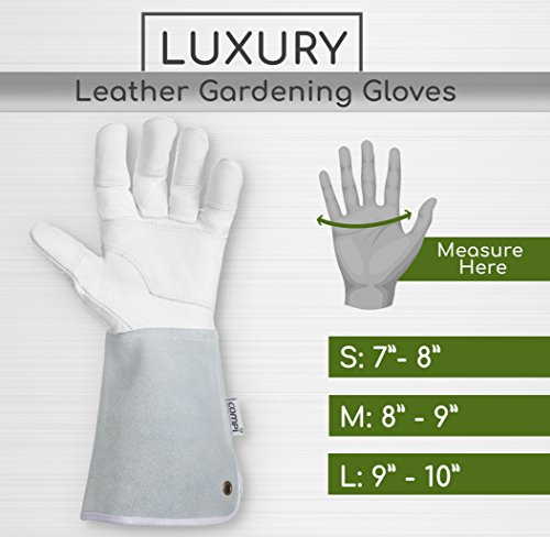 Professional Rose Pruning Garden Gloves - Luxurious Goatskin Leather with Reinforced Padding and Long Cowhide Suede Gauntlets - Flower Planting, Pruning, and Gardening Glove Gift Set - Womens, Small by COMPI (Image #6)