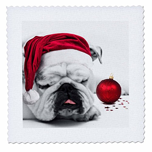 Pillow Bulldogs Santa (3dRose qs_62826_1 Sleeping Bulldog in Santa Hat Christmas Photo Courtesy of Esther Matheus-Quilt Square, 10 by 10-Inch)