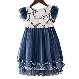 Little Girl Flower Dress Party Princess Dress Sleeveless Cotton Lace Girl Dresses Size 2-10(26053 Blue2T)