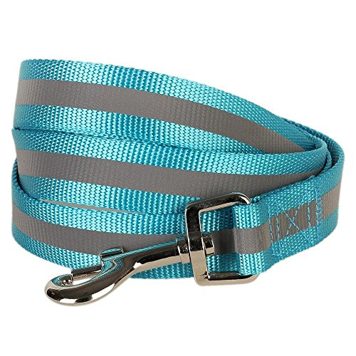 Blueberry Pet 1-Inch by 4-Feet Reflective Dog Lead, Large, Medium Turquoise