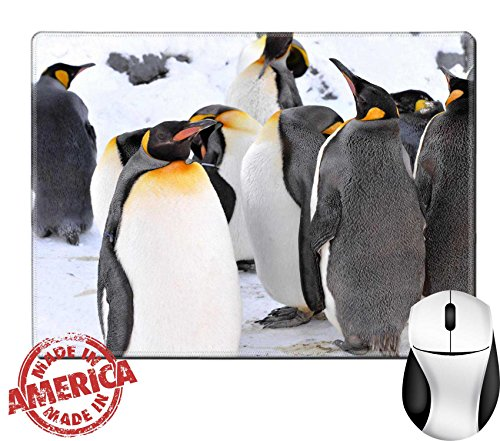 "Asahiyama Zoo (Luxlady Natural Rubber Mouse Pad/Mat with Stitched Edges 9.8"" x 7.9"" IMAGE ID: 26964068 King Penguin Colony at the Asahiyama Zoo Japan)"
