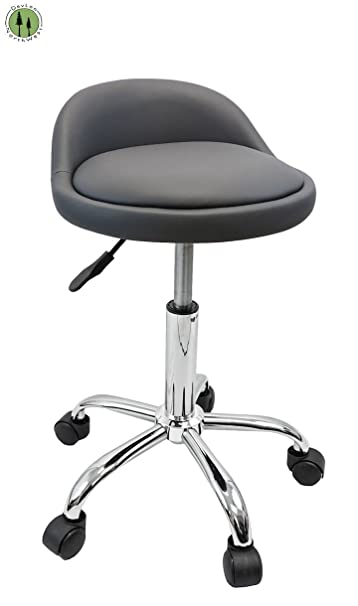 DevLon NorthWest Salon Stool with Back Rest Saddle Hydraulic Spa Stool (GRAY)  sc 1 st  Amazon.com : salon stool chair - islam-shia.org