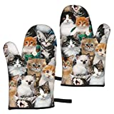 Cat Breeds Packed Cats Oven Mitts Heat Resistant