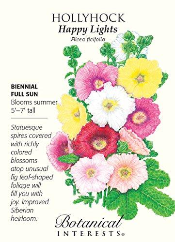 Happy Lights Hollyhock Seeds - 300 mg - Biennial