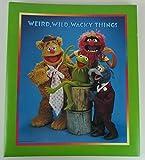 Hallmark Muppets Kermit Large 2-Post Expandable Scrapbook Photo Album