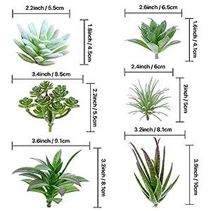 TIMEYARD 12 Pack Artificial Succulents, Faux Succulent Plants Fake Succulents Unpotted in Different Kinds, Echeveria Agave Arrangement Realistic Home décor 3