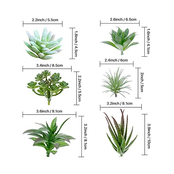 TIMEYARD-12-Pack-Artificial-Succulents-Faux-Succulent-Plants-Fake-Succulents-Unpotted-in-Different-Kinds-Echeveria-Agave-Arrangement-Realistic-Home-dcor