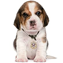 Gold-Plated K-9 Honor Badge Dog Tag